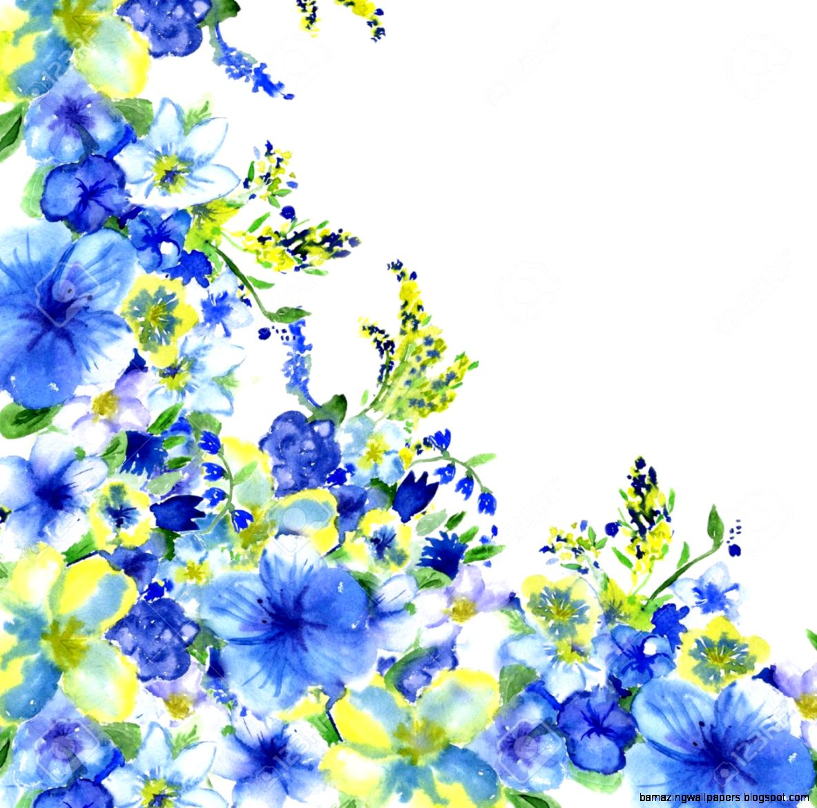 Yellow and blue flower white background amazing wallpapers view original size mightylinksfo