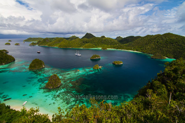 Raja Ampat, West Papua, Wayag, Waisai, Waigeo, Dive Spot, Misool, Raja Ampat Dive Spot, Manta Point, Dive in Raja Ampat, West Papua, Coral, World Coral Triangle, Segitiga Karang Dunia, Kalabia, Wobbegong, Schooling Fish, Reef Manta, Mike's Point, Blue Corner, Kuburan Reef, Misool Resort, Place to Sleep in Raja Ampat, Raja Ampat Explorer, backpacking to Raja Ampat, Festival Raja Ampat