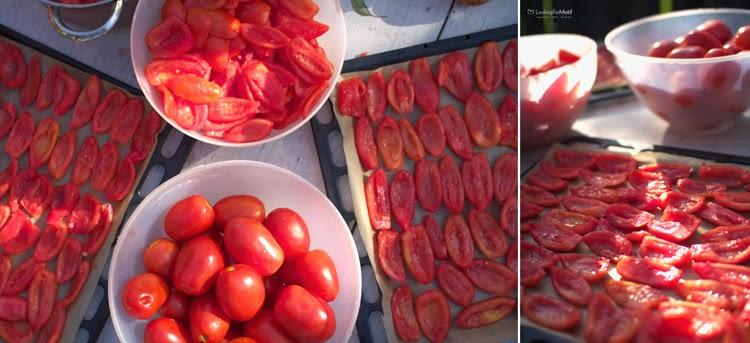 podłużne pomidory