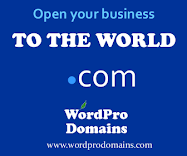 Domain Names & Hosting