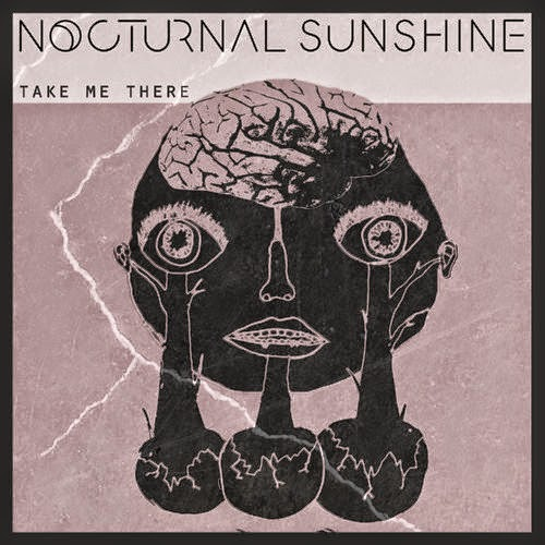 Nocturnal Sunshine - Take Me There / Never Too Late