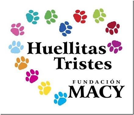 ARTICULOS MACY HUELLITAS TRISTES