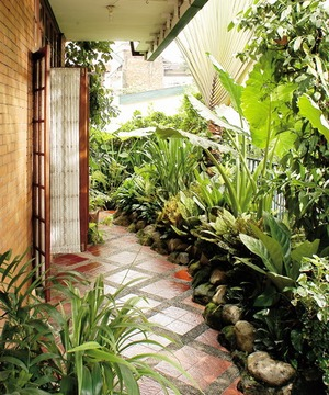 tips agar taman kecil terlihat indah tukang taman