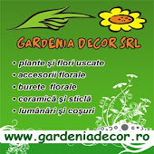 Gardenia Decor SRL