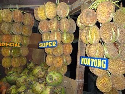 durian indonesia, durian bandung