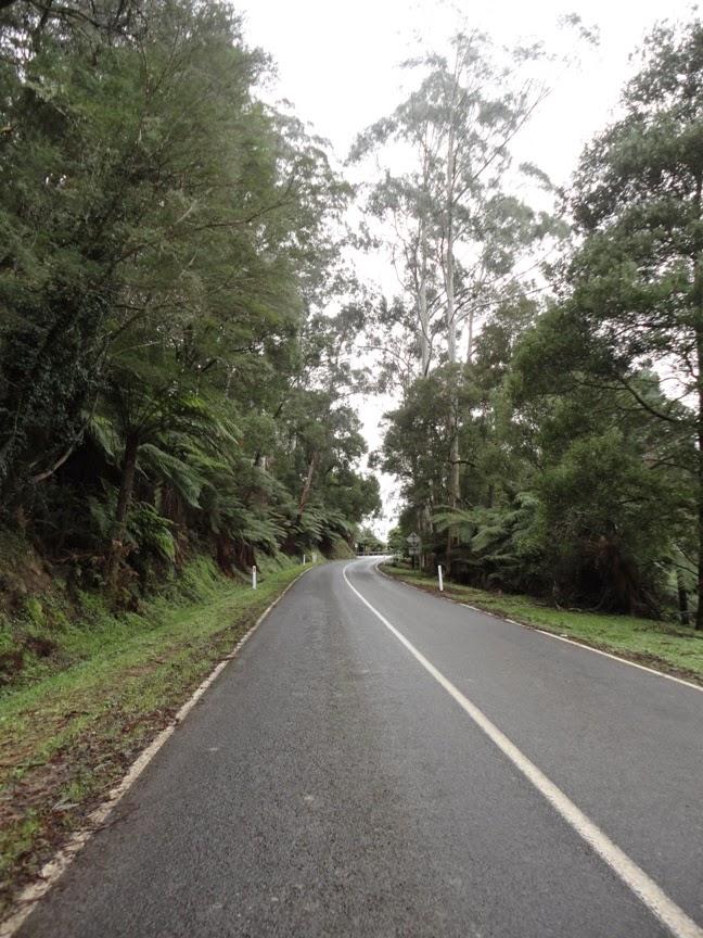 Mt Donna Buang climb