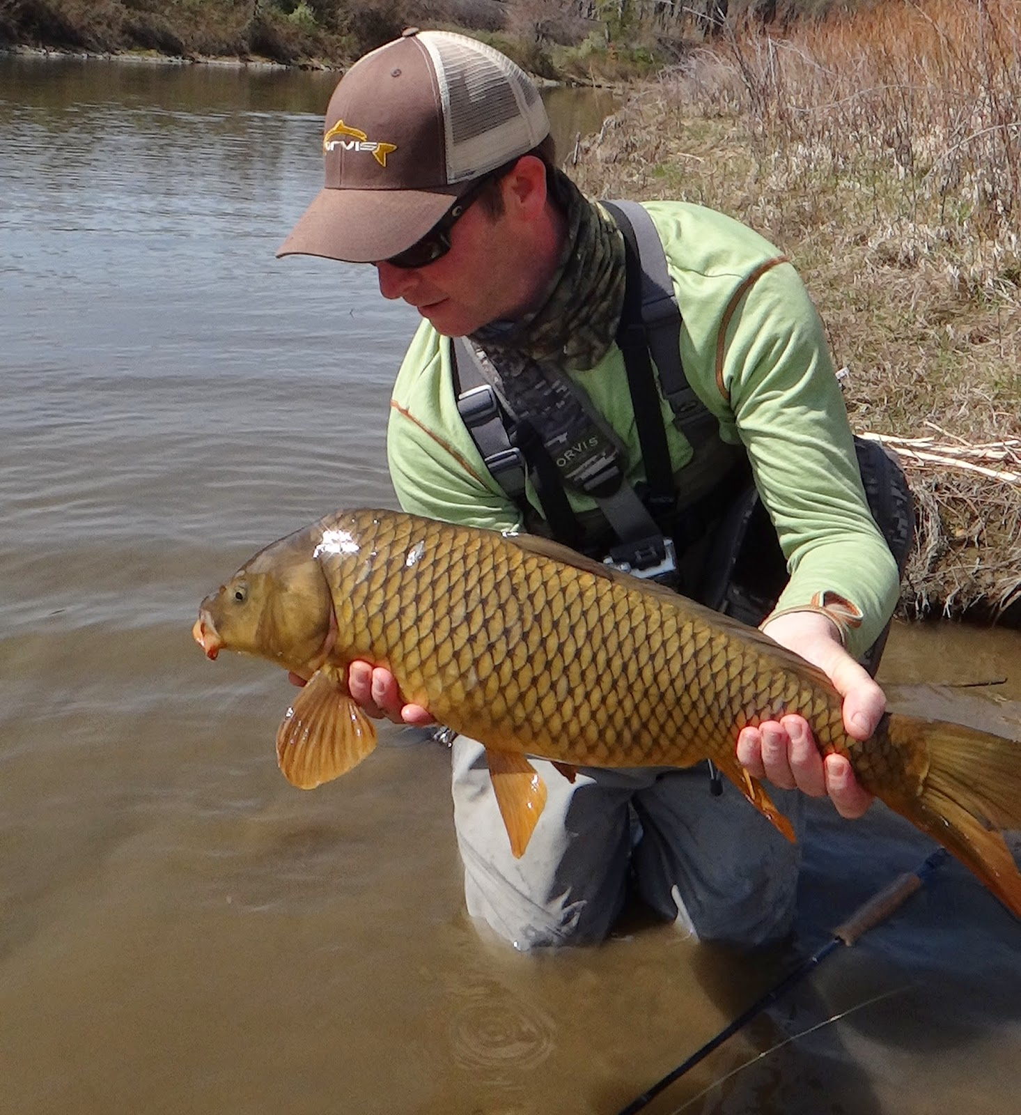 Brian marz 39 s fly fishing oregon blog recent fishing pics for Oregon free fishing