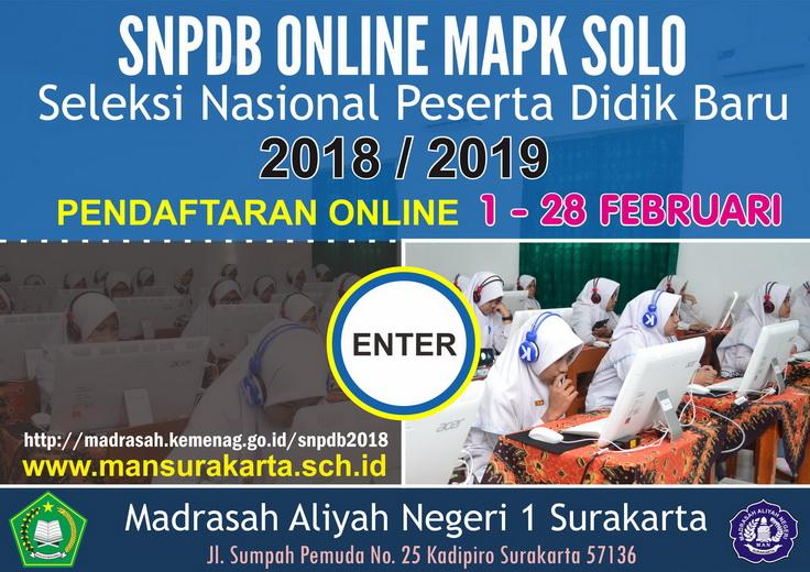 SNPDB MAPK 2018 / 2019
