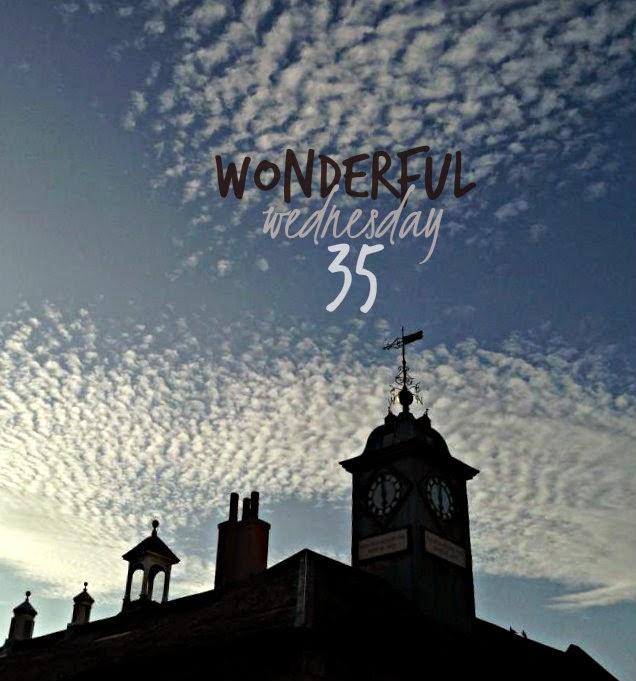 Wonderful Wednesday #35