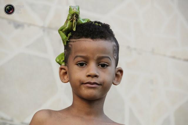 Игуана сидит на голове у мальчика в Сальвадоре. (Jorge Silva/REUTERS)