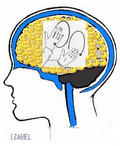 Meu cérebro de professora