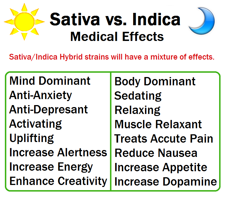 Sativa vs Indica for Pain http://www.cannabisnook.com/2013/03/indica-vs-sativa.html
