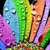 الألوان ..... ماذا تدل على شخصيتك ..؟؟؟؟