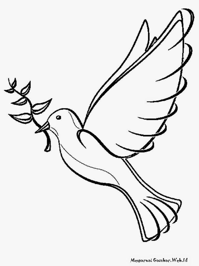 Halaman Mewarnai Gambar Burung Merpati Putih