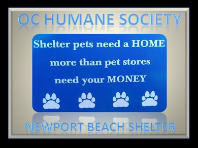 OC HUMANE SOCIETY