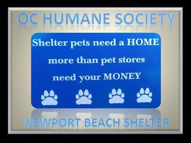 OC HUMANE SOCIETY