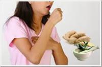 Herbal Obat Batuk : Cara Membuat Ramuan Obat Tradisional Batuk