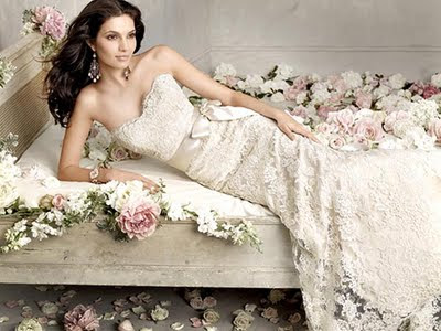 Nice Dresses Wedding on Wedding Dress White Wedding Dress Wedding Dresses 2011 Cute Nice