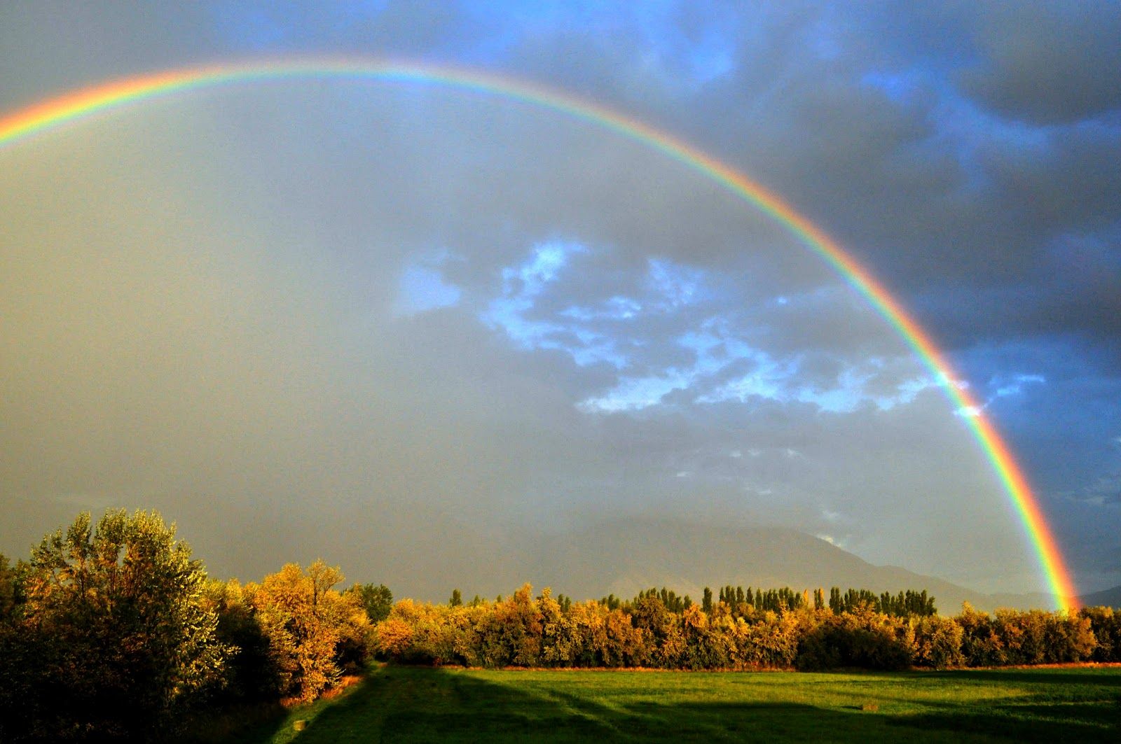 rubowhappenings: Rainbows