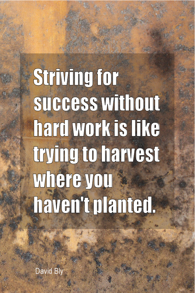 visual quote - image quotation for WORK and SUCCESS - Striving for success without hard work is like trying to harvest where you haven't planted. - David Bly