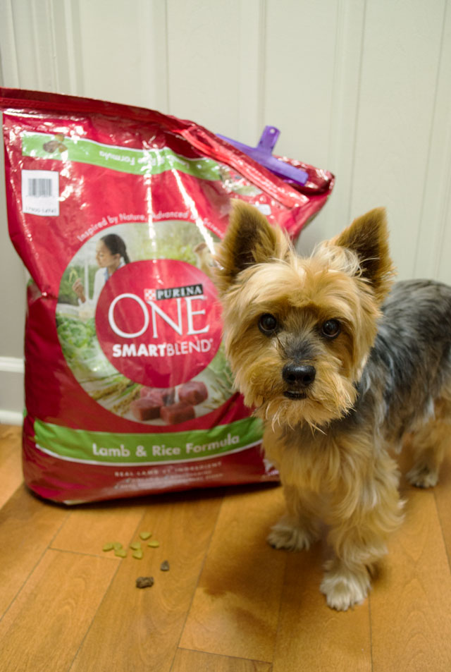 28 day purina one challenge