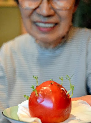 Mutant Fukushima fruits and vegetables
