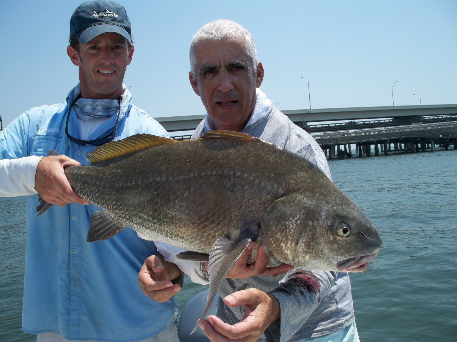 Florida fishing guides fishing reports saltwater boat for Tampa bay fishing outfitters