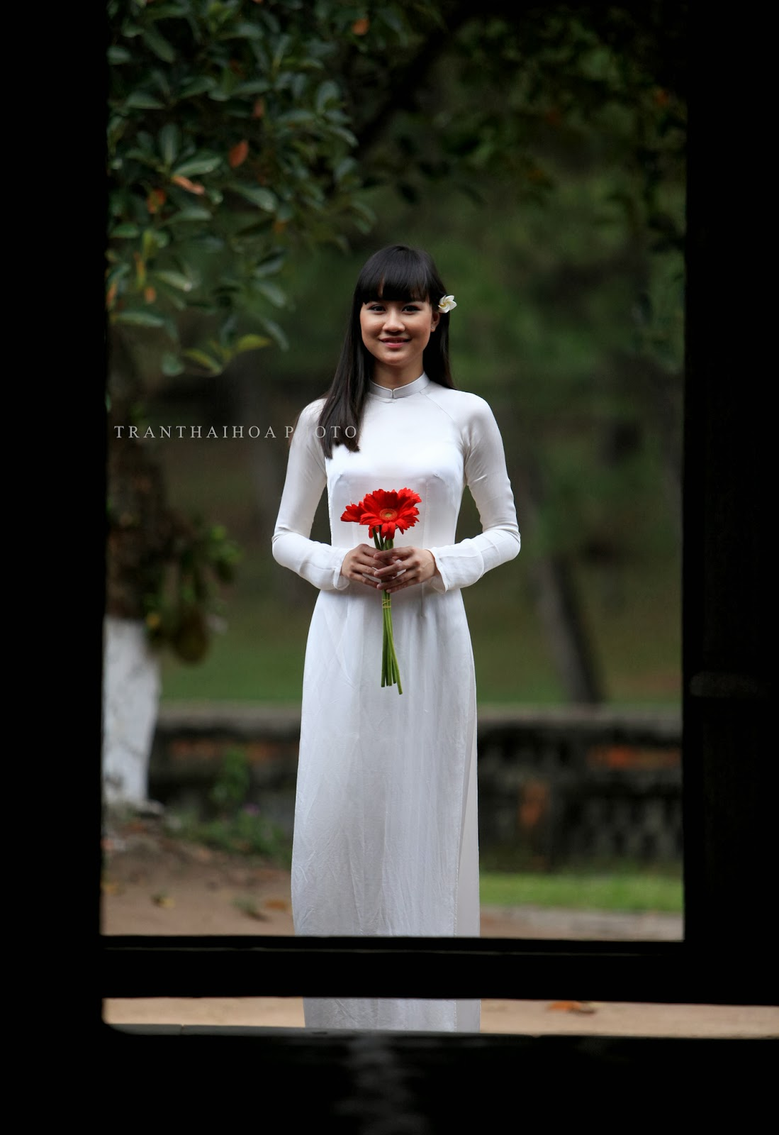 Vietnamese traditional long dress (Áo dài)