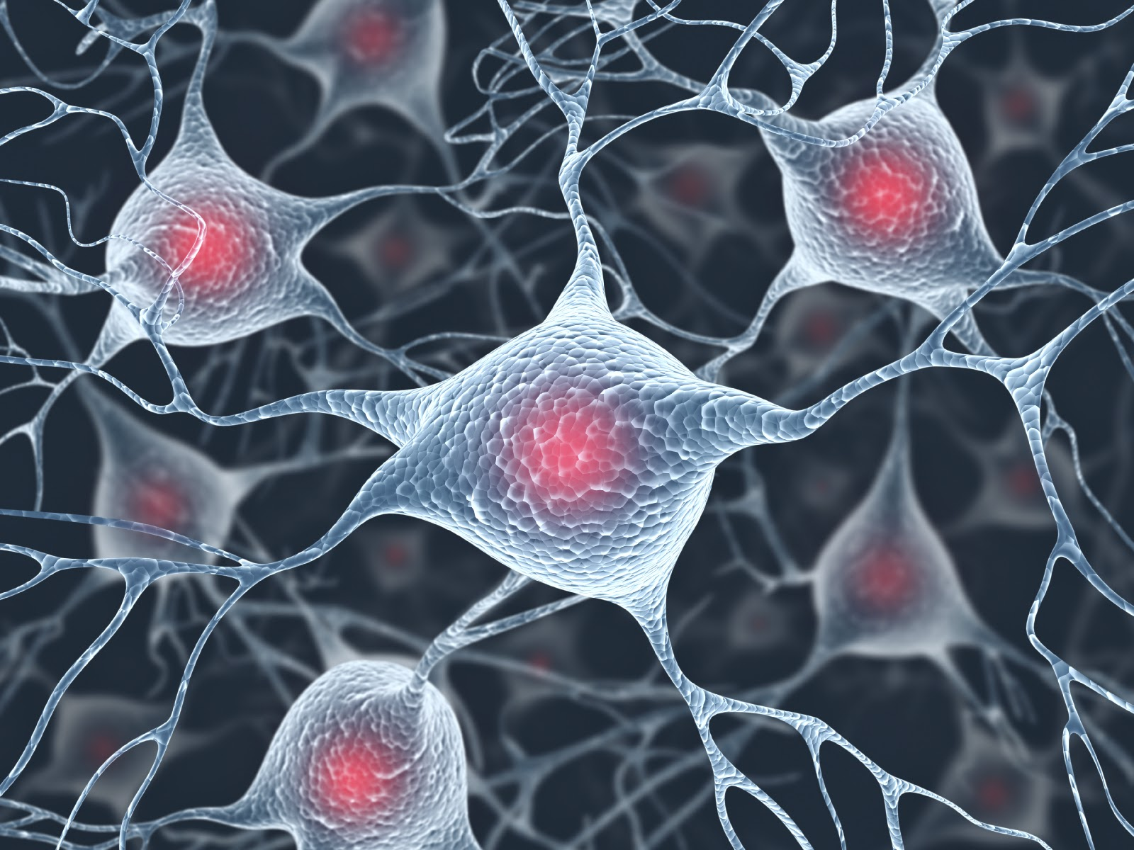 Why Upper Motor Neurons Degenerate In ALS