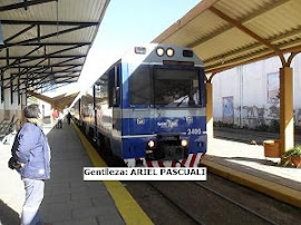 TREN URBANO DE SALTA. CUANDO LAS PALABRAS ABUNDAN Y LOS HECHOS BRILLAN POR SU AUSENCIA
