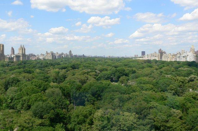 Vistas de Central Park desde el Hotel Ritz Carlton en Nueva York