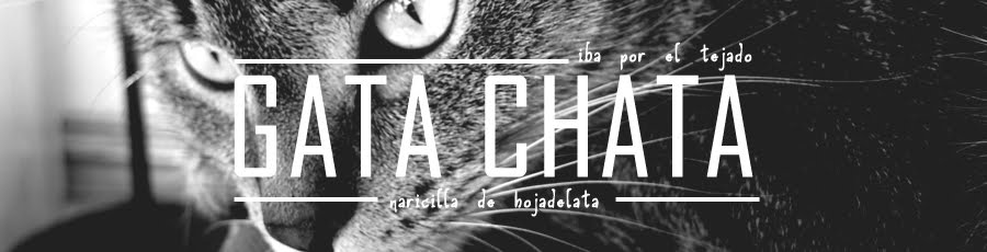 GATA CHATA