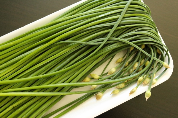 chinese chives chinese chives fisherman s shrimp with chinese chives ...