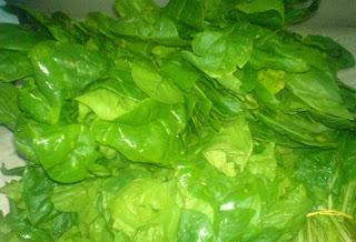 spanac proaspat de gradina, spanac verde de la tarani, retete cu spanac, preparate din spanac,