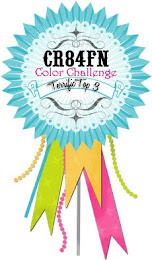 CR84FN Top 3