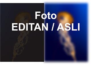 Cara Mudah Mengetahui Foto Hasil Editan Photoshop atau Asli