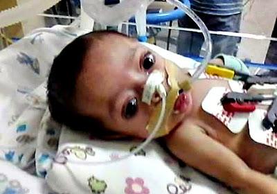 Pequeno Gerson (foto: reprodução/facebook)