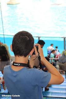 fotografia do meu filho a fotografar a baia dos golfinhos