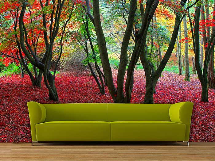 Servicios generales fotomurales for Decoracion en madera para paredes