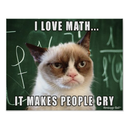 I Love Math | The Grumpy Cat | Funny Poster