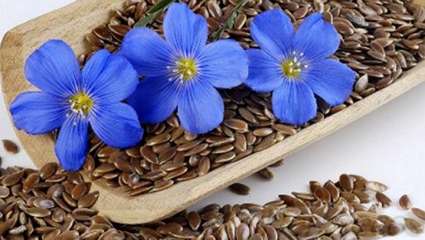 Органические Семена Льна от iHerb