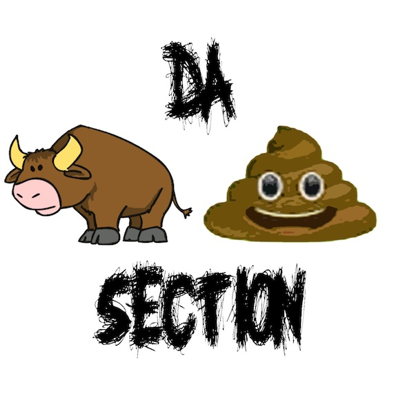 DA BULLSHIT SECTION