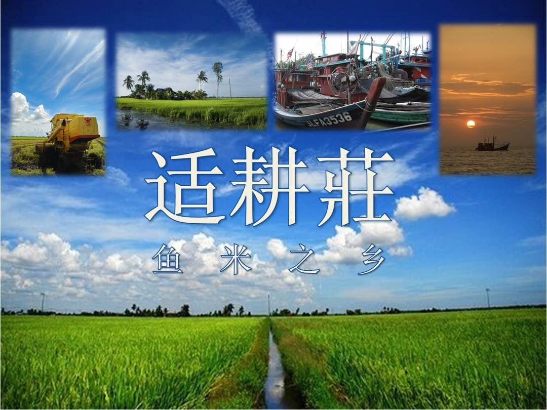 马来西亚-适耕庄