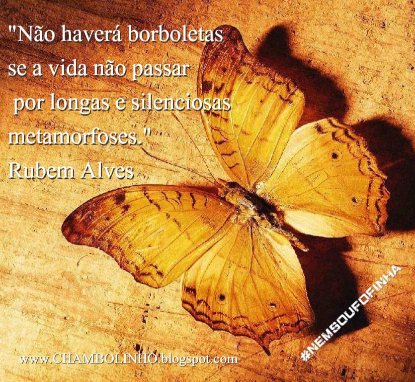 Frase Rubem Alves