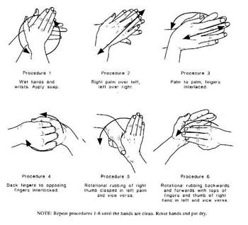 Informasi untuk hidup sehat banyak orang berpikir dan berpendapat bahwa seringnya mencuci tangan hanyalah buang buang energi dan waktu saja tetapi bila kita cermati mereka sangat ccuart Image collections