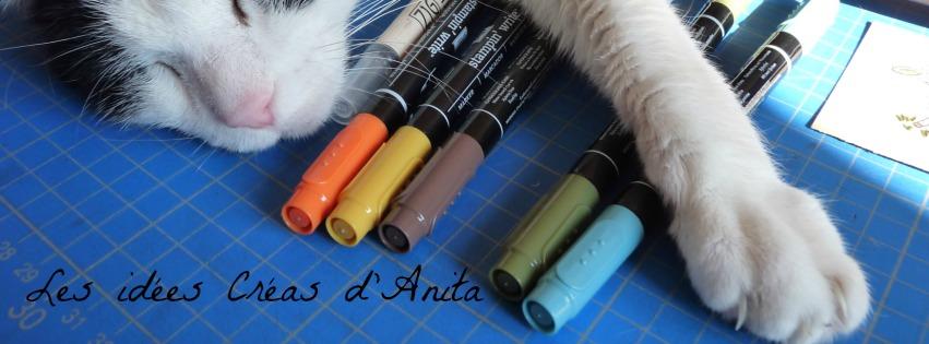 *Les Idées Créas d'Anita