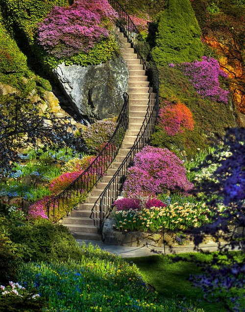 The Most Beautiful Natural Garden In WorlD