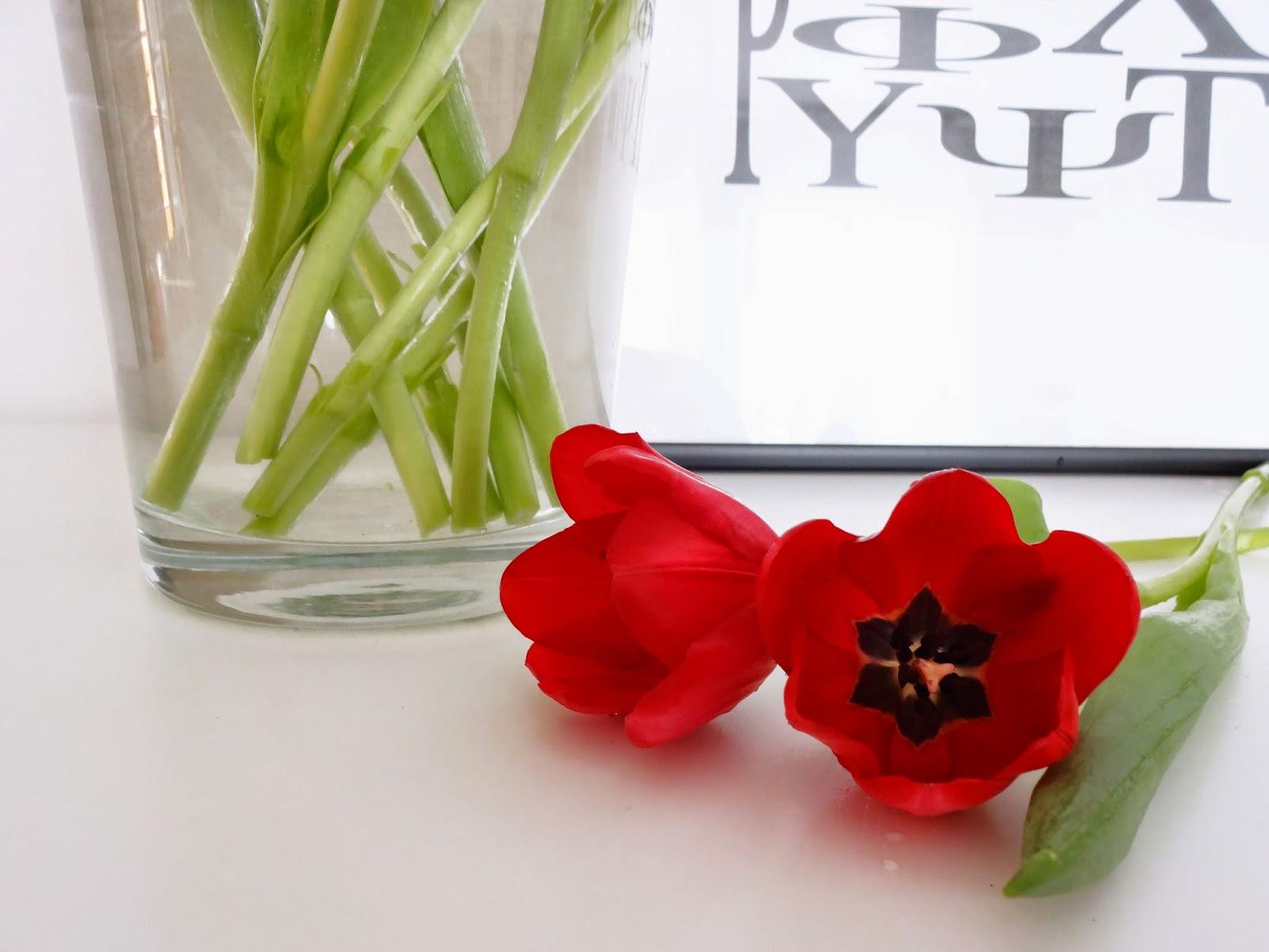 Basteln Malen Kuchen Backen Rote Tulpen