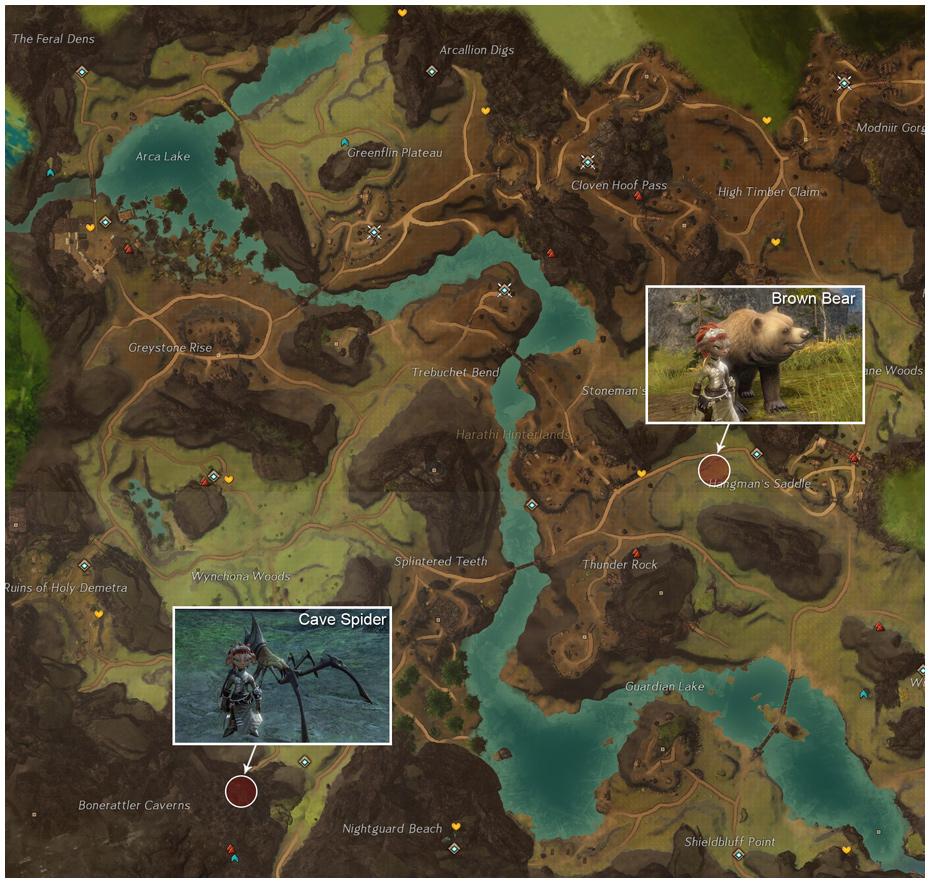 Guild Wars 2 Junkie: Pet Locations
