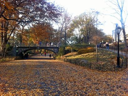 Central Park  hoje!